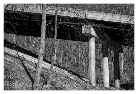 BW photograph of a road overpass and amid some trees.
