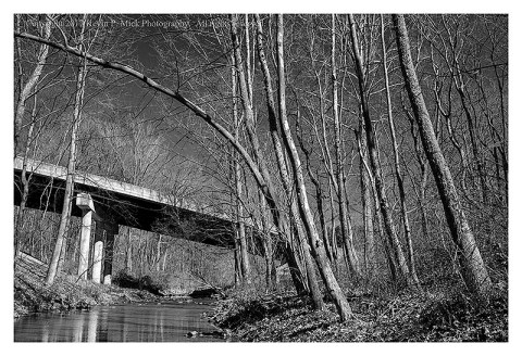 BW photograph of a road overpass amid some trees.