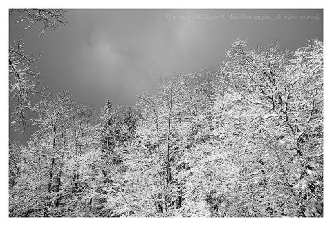BW photograph of clouds moving over snow covered trees.