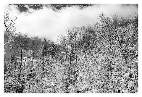 BW photograph of clouds over snow covered trees.