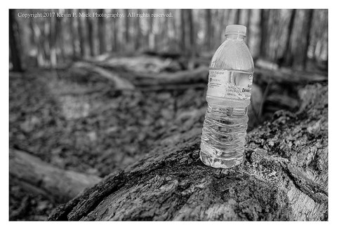 BW photograph of a water bottle left on a downed log in the woods.
