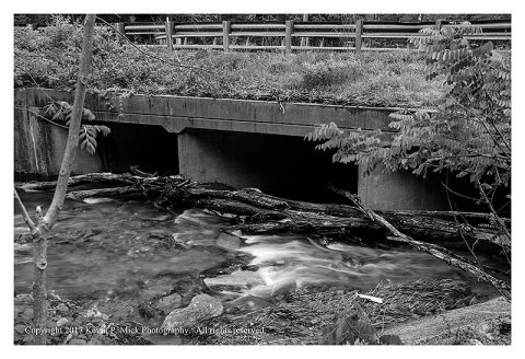 BW photograph of logs wedged against a bridge over Big Hunting Creek after a heavy rain.