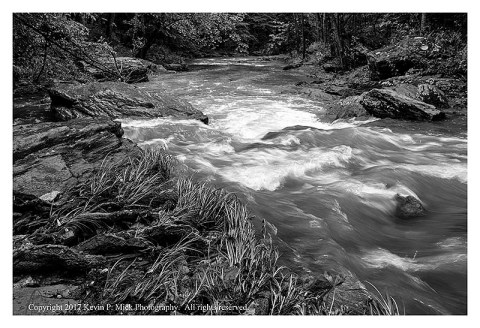 BW photograph of roots, grasses, and water running at Morgan Run after a storm.