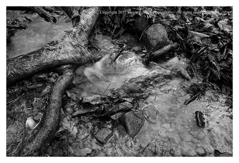 BW photograph of the water runoff on the Hog Rock Trail.