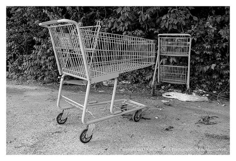 BW photograph of two shopping carts and some trash sitting to the side of a parking lot.