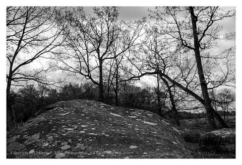 BW photograph of some of the rocks at Spangler's Spring with trees and clouds in the background.