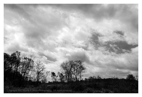 Bw photograph of a distant composition at Spangler's Spring with trees and overcast clouds.