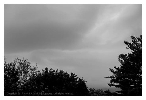 BW photograph of storm clouds between a stand of trees.