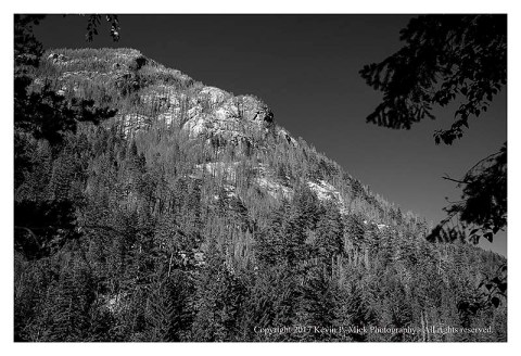 BW photograph of part of the North Cascades as seen through some trees.