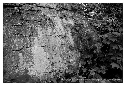 BW photograph of a boulder and some leaves near Little Round Top in Gettysburg.