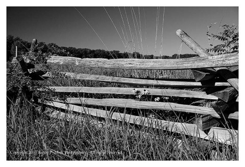 BW photograph of a rail fence near the Wheat Field in Gettysburg.