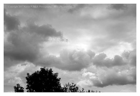 BW photograph of dark and light clouds with a tree in the foreground.