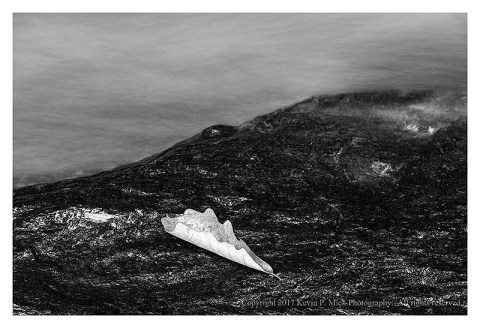 BW photograph of a fallen leaf laying on a rock with a background of rushing water.