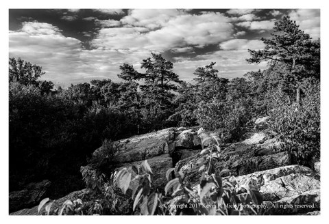 BW photograph looking south across Wolf Rock.