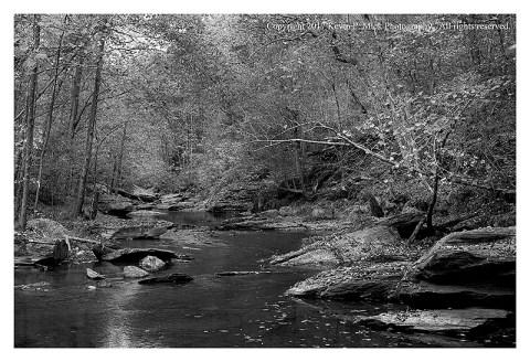 BW photograph of Morgan Run looking upstream.