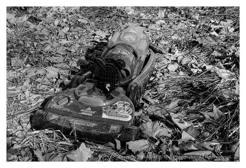 BW photograph of a Bissell vacuum cleaner laying in the leaves-front view.