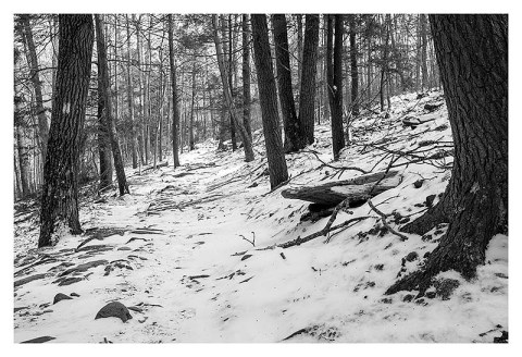 BW photograph of the beginning of the Cat Rock Trail in winter