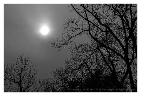 BW photograph of the low winter sun against an overcast sky with silhouetted trees.