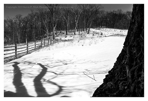 BW photograph of a tree casting a shadow on Cemetary Hill in Gettysburg, PA.