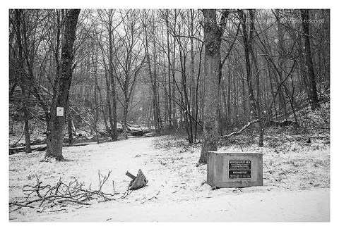 BW photograph of snow the first day of Spring 2018 at Morgan Run.