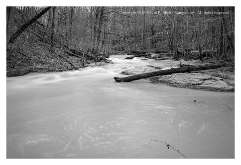 BW photograph of Morgan Run after a heavy rain looking straight upstream.
