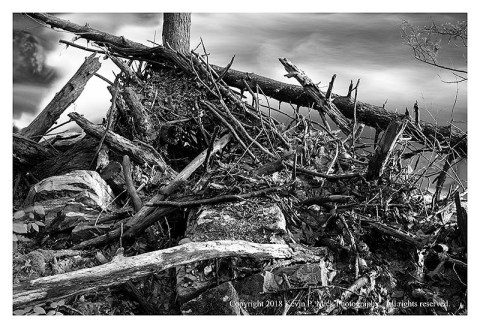 BW photograph of flood debris along Big Hunting Creek.