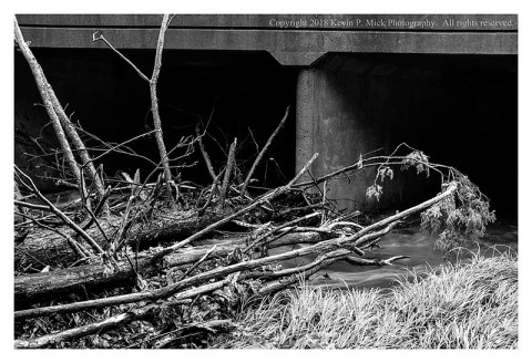 BW photograph of tree debris against an overpass after heavy rains.