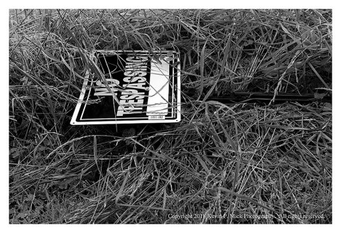BW photograph of a No Trespassing sign laying on the ground.