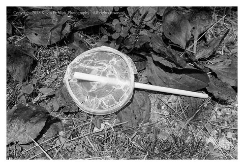 BW photograph of a straw and lid laying in the grass.