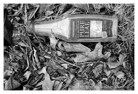BW photograph of a plastice tea bottle laying amid some leaves.