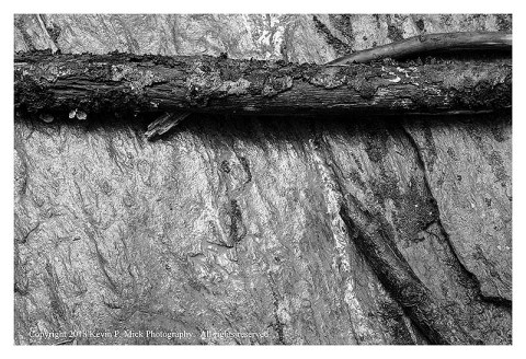 BW photograph of some sticks laying on a rock after a flood.