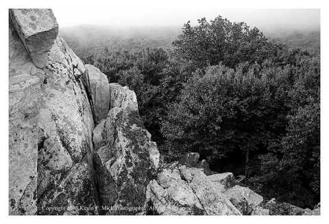 BW photograph of Cat Rock looking down into the fog and trees.