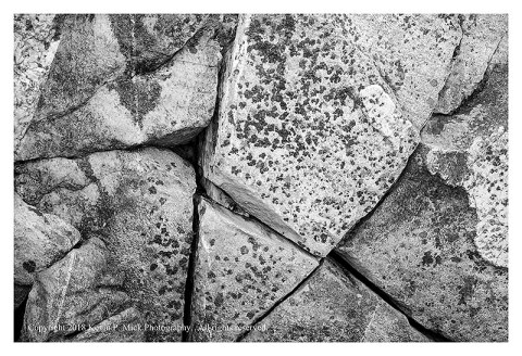 BW photograph of the joints between the cracked blocks that make up Cat Rock
