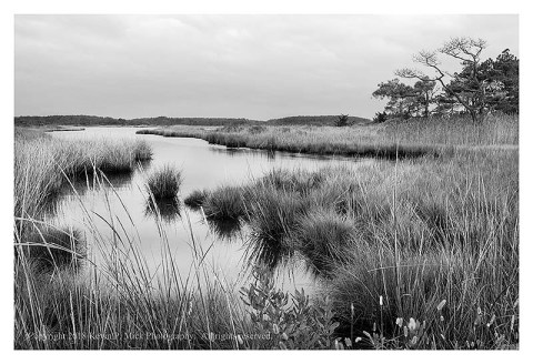 BW photograph of an inlet off Route 1 in Delaware.