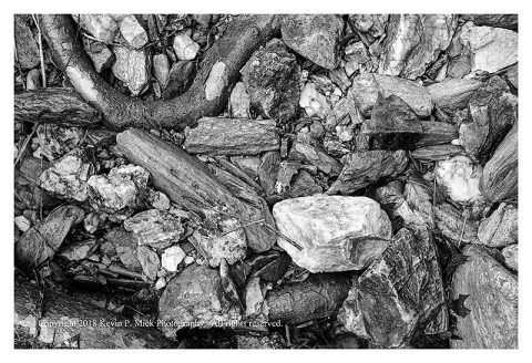 BW photograph of rocks amid some exposed roots after a flood.
