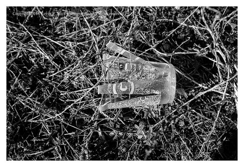BW photograph of a shredded plastic cup laying in grassy weeds.