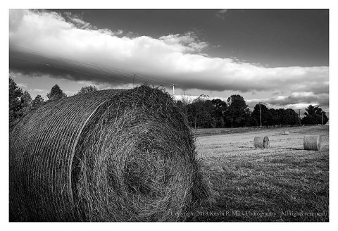 BW photograph of hay rolls in Antietam.