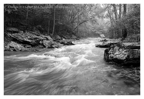 BW photograph of Morgan Run with somewhat sharper water due to faster shutter speed.