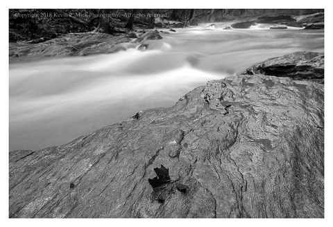 BW photograph of a lone maple leaf on a large rock with Morgan Run in the background.