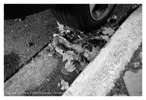 BW photograph of fallen leaves in a gutter washed against a car tire after a heavy rain.