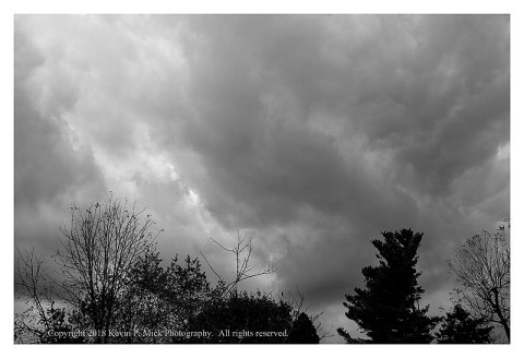 BW photograph of rain clouds above silhouetted trees.
