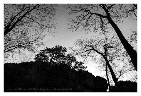 BW photograph of Wolf Rock and trees silhouetted against the rising sun.