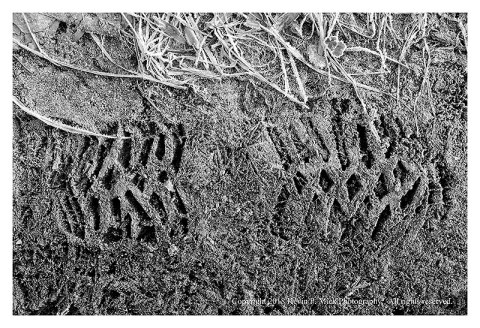 BW photograph of a boot print frozen in mud.