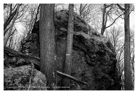 BW photograph of trees in front of a vertical rock formation early in the morn.
