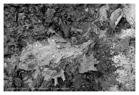 BW photograph of water draining off of a trail following a heavy rain.