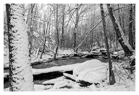BW photograph of the recent snow at Morgan Run.