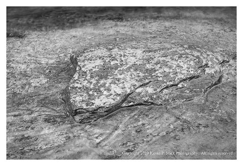 BW photograph of a lichen covered flat rock in Morgan Run.