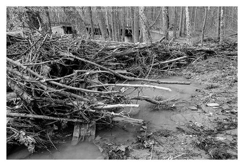BW photograph of debris that accumulated after a recent flood.
