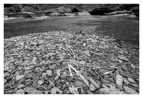 BW photograph of the stones that have accumulated on a flood plain at Morgan Run.