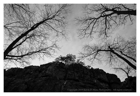 BW photograph looking upward at the top of a rock formation with trees reaching into the sky.